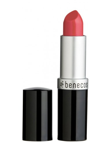 Rossetto Peach|Benecos|Wingsbeat