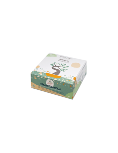 Confezione regalo piantamola - Bonsai|Wingsbeat