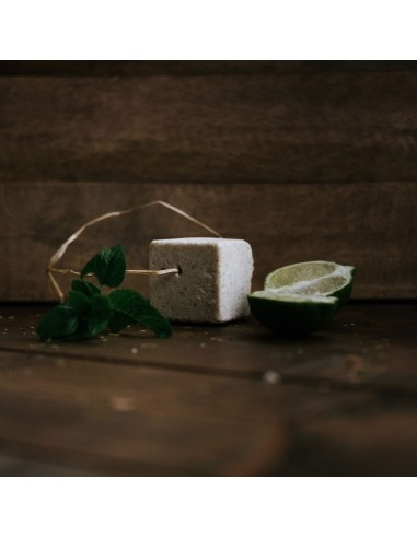 Lo Scacciaguai Shampoo E Balsamo Solido 2 in 1|Ethical Grace|Wingsbeat