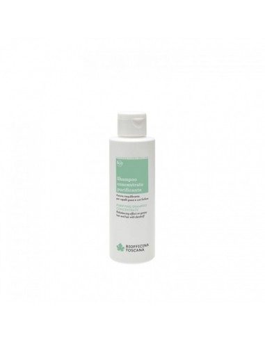 Shampoo concentrato purificante Biofficina Toscana - Wingsbeat