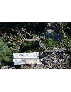 Saponetta Da Campo Con Astuccio Stone Paper 25 mg