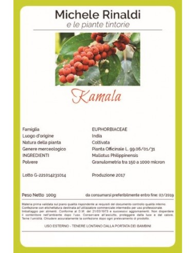Kamala-michelerinaldi-wingsbeat