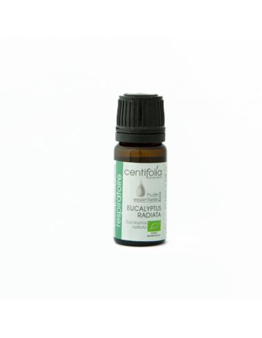 Olio essenziale di Eucalipto Radiata | Wingsbeat