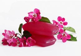 Glicerina vegetale o glicerolo, la base della cosmesi ecobio